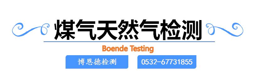 煤气检测 天然气检测 0532 67731855